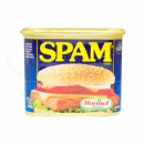HOMEL SPAM 20%LESS SODIUM 340G☆NEW