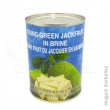 YOUNG GREEN JACKFRUIT 565G ™ NEW